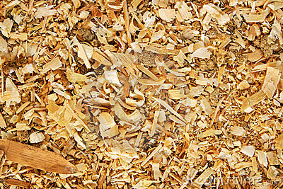 Sawdust Animal Bedding (Texture) Royalty Free Stock Images.