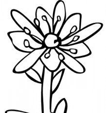 Gg Saxifraga Aizoides clip art.
