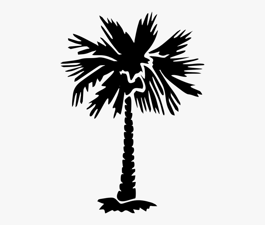 Palmetto Tree Silhouette , Transparent Cartoon, Free.