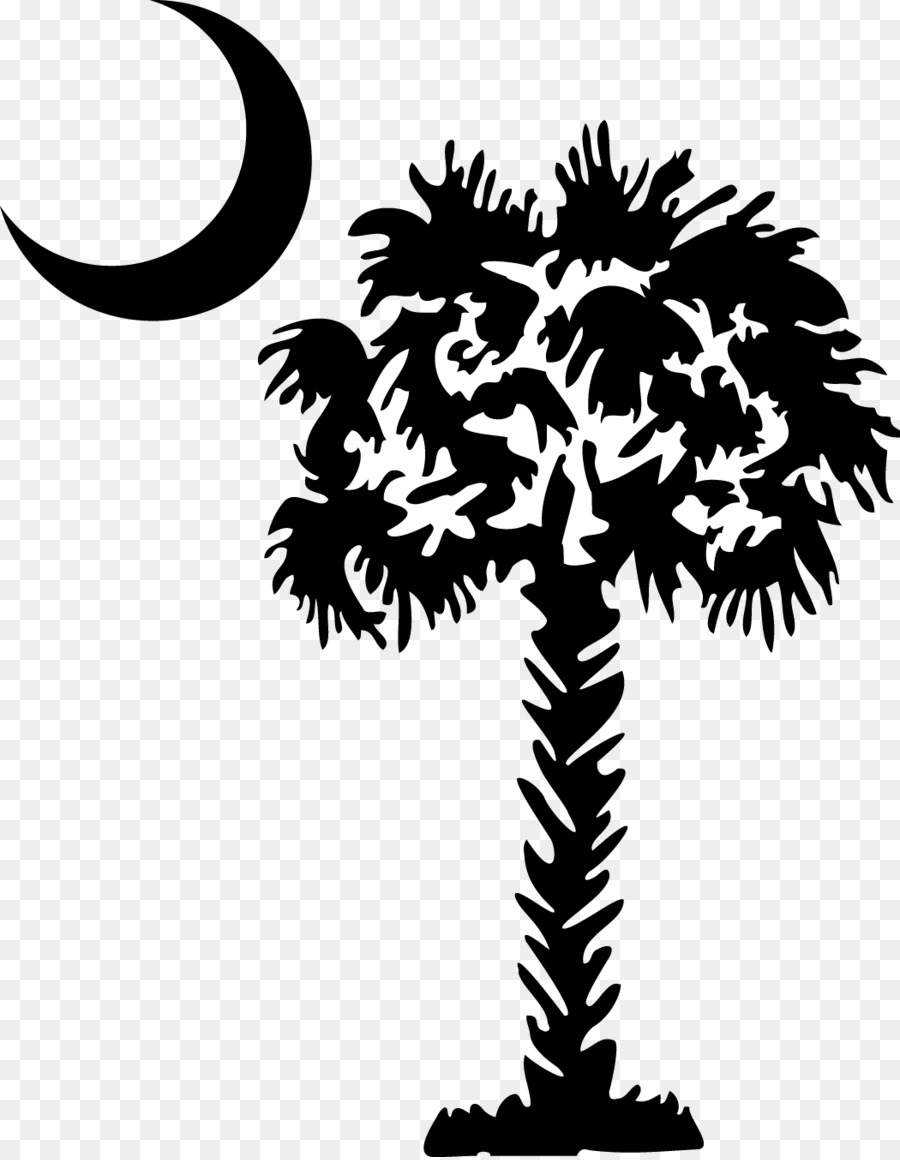 Palm Tree Silhouette.