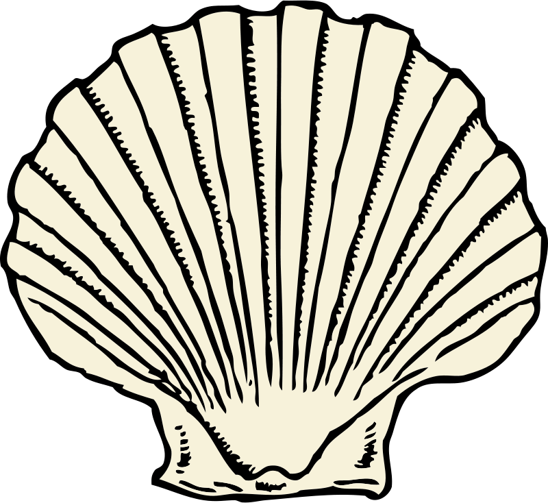 Free Clipart: Scallop shell.