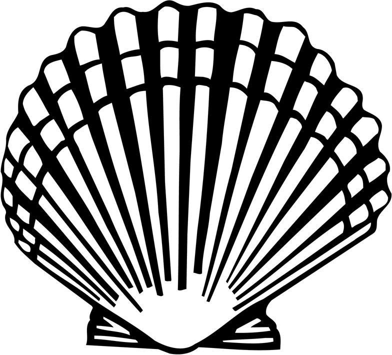 Sea Scallop Shell Clip Art free image.