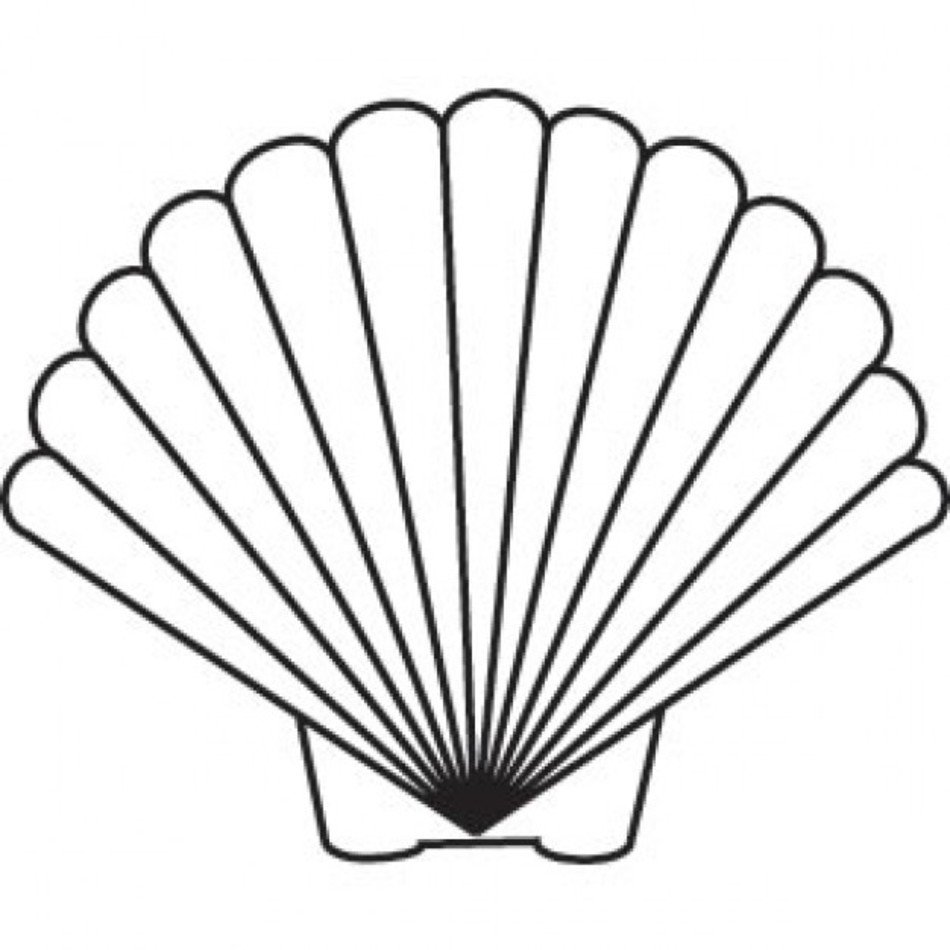 Scallop Shell Clip Art N7 free image.