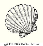 Scallop Shell Clip Art.