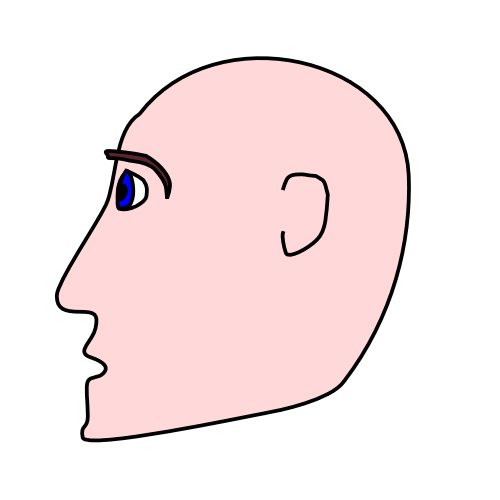 Free Head Clipart, 1 page of Public Domain Clip Art.