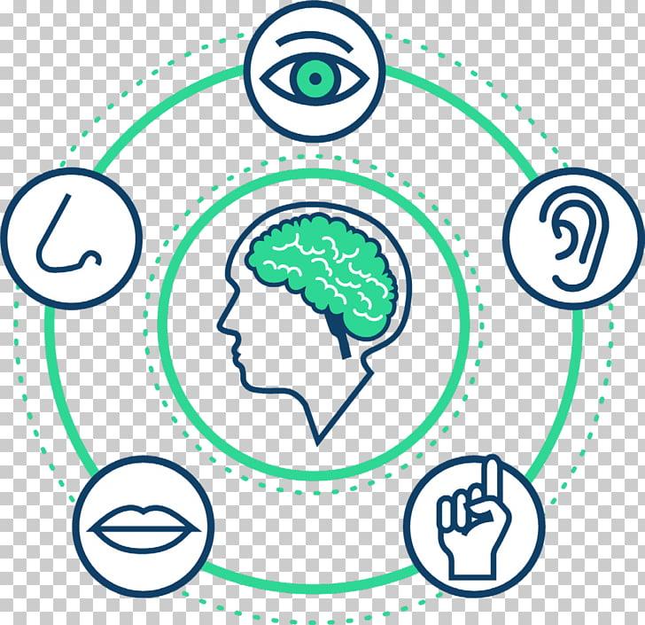 S.C.A.M.P.E.R Synesthesia Perception Mind Sense, Synesthesia.