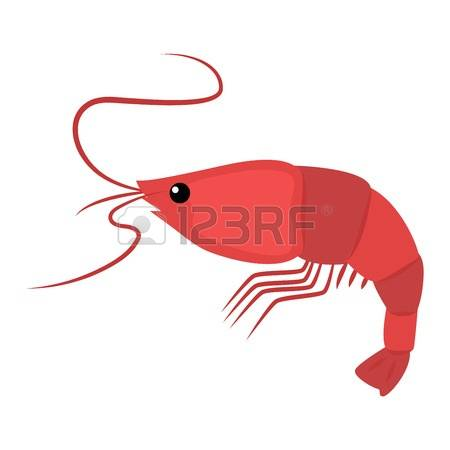 80 Scampi Stock Illustrations, Cliparts And Royalty Free Scampi.