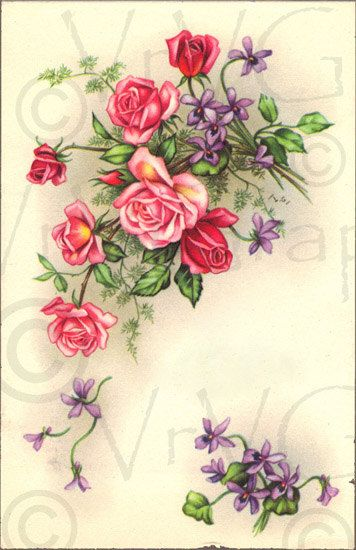 Victorian Pink Roses Purple Flowers ShaBby Vintage French Postcard.