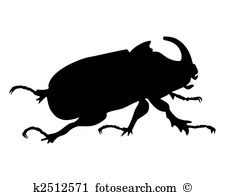 Scarabaeidae Illustrations and Clipart. 8 scarabaeidae royalty.