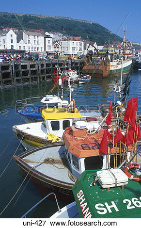 Picture of Fishing Boats in Harbour Scarborough UK uni.