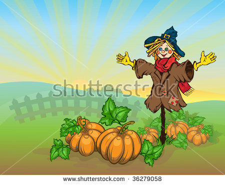 Pumpkin Patch Stock Photos, Royalty.