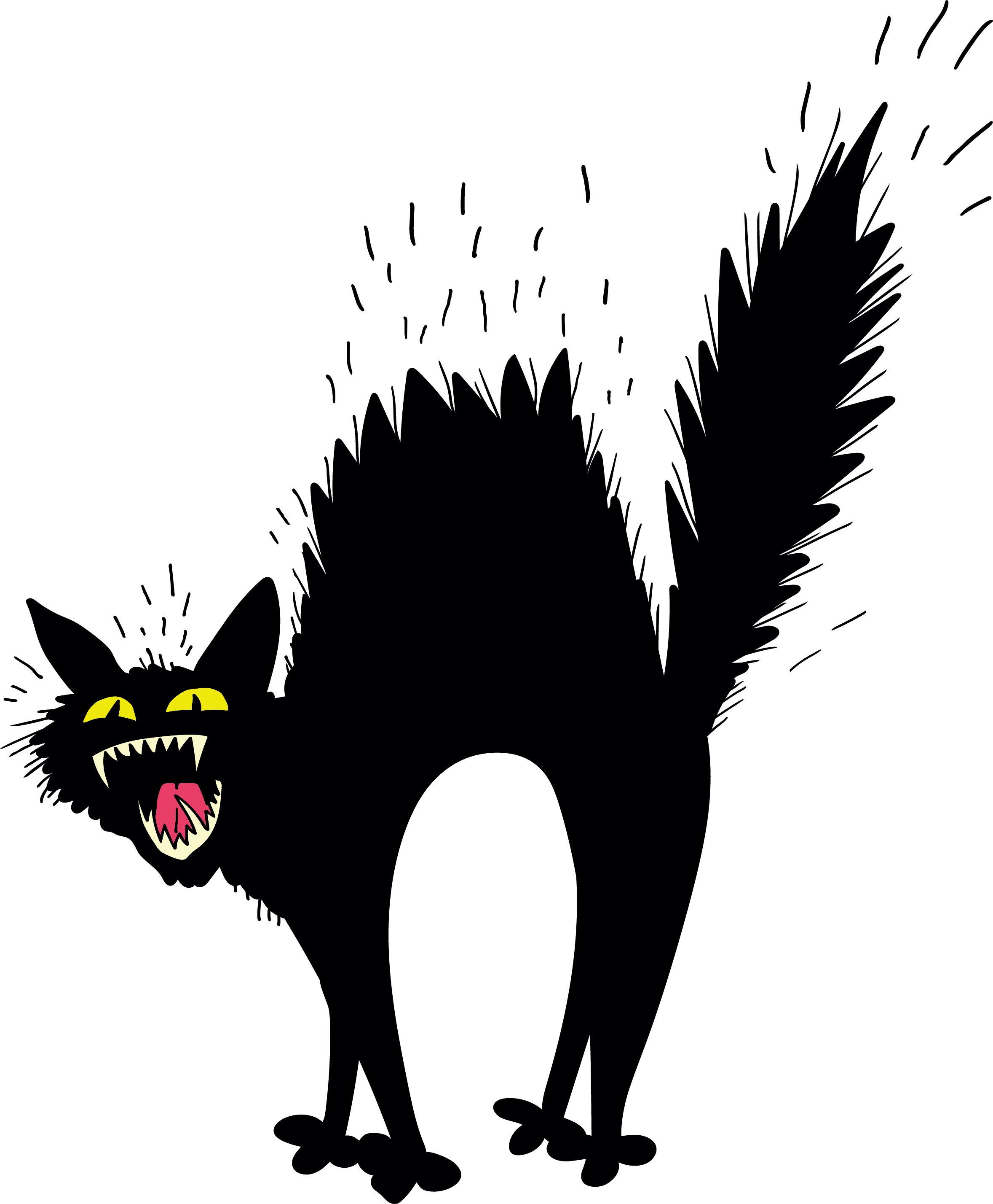 Scary black cat png download.