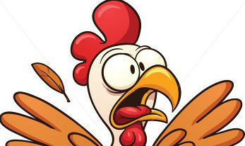 Seminar: Stress levels… in chickens.