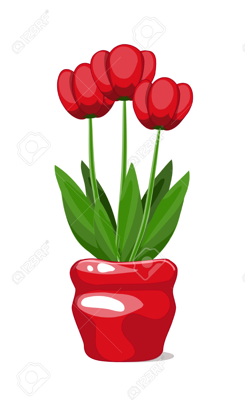 Three Bright Red Tulips Blooming In A Bright Scarlet Flower.