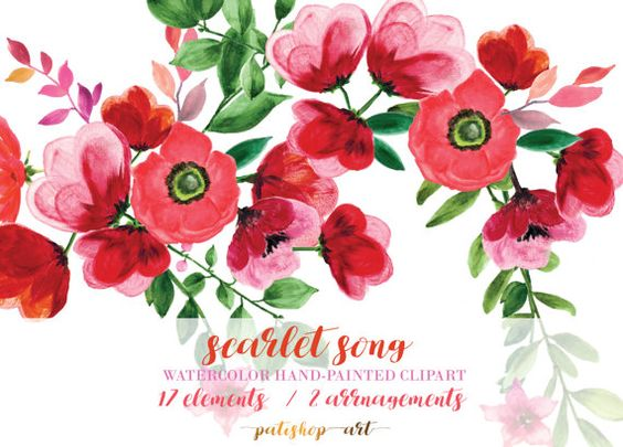 SCARLET SONG Watercolor Flowers Clipart Red Floral by PatishopArt.