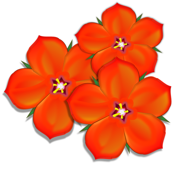 Scarlet Pimpernel Group.