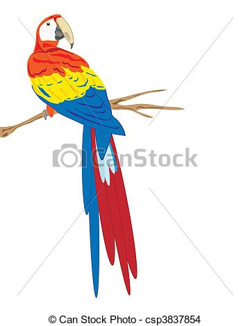 Scarlet macaw Vector Clip Art EPS Images. 86 Scarlet macaw clipart.