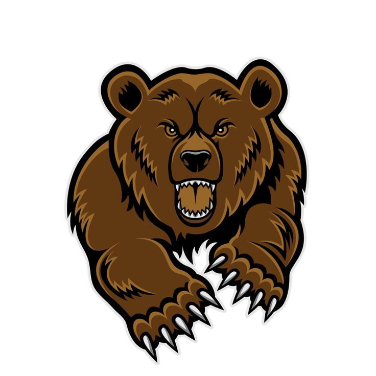 Bear mascot clipart bears grizzly.