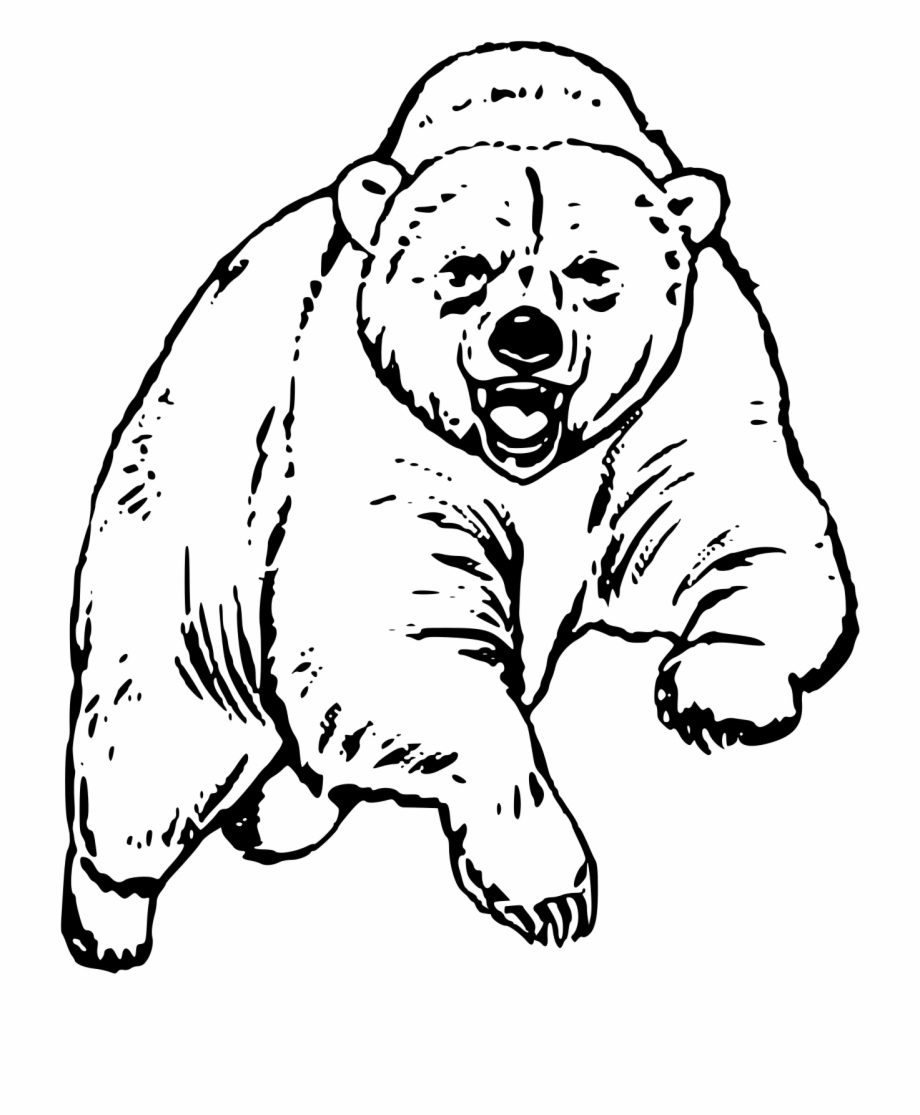 This Free Icons Png Design Of Big Bear.