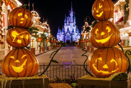 cinderella cinderella's pumpkin.