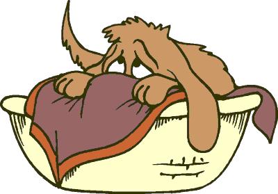 Cartoon Dog Pictures.