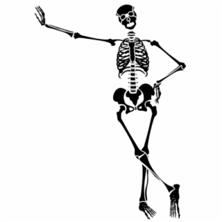 spooky scary skeletons png.