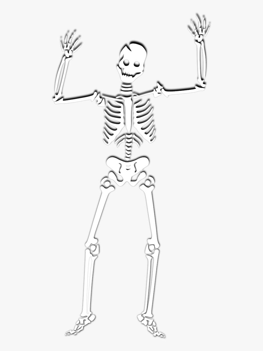 Halloween Skeleton Photos.