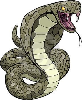 Scary Snake Cartoon snake tattoo images & designs.