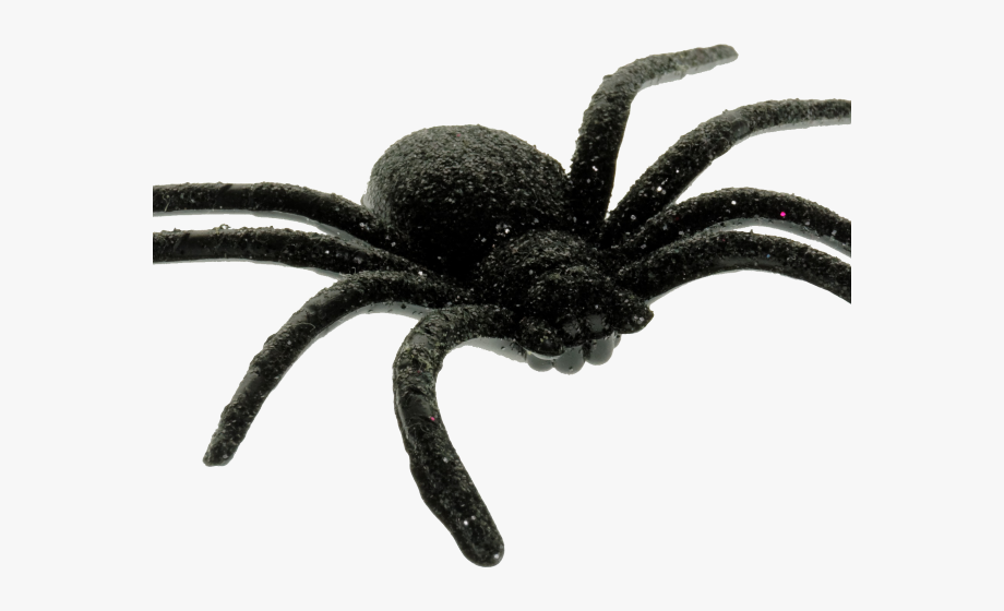 Scary Spider Cliparts.