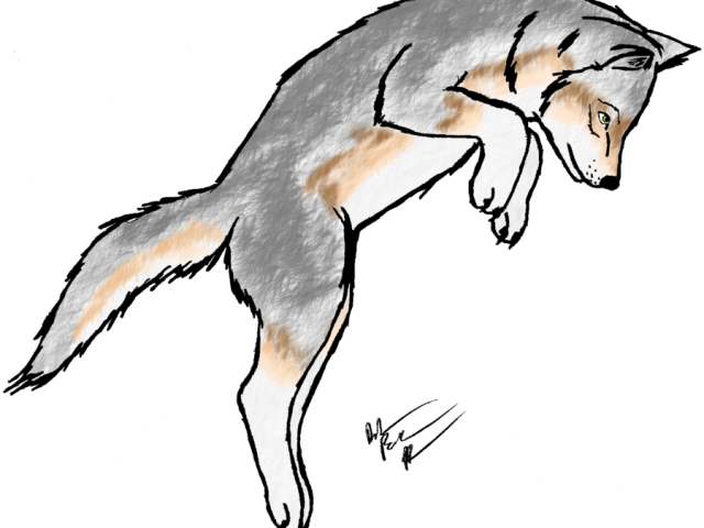 White Wolf Clipart Scary Wolf.