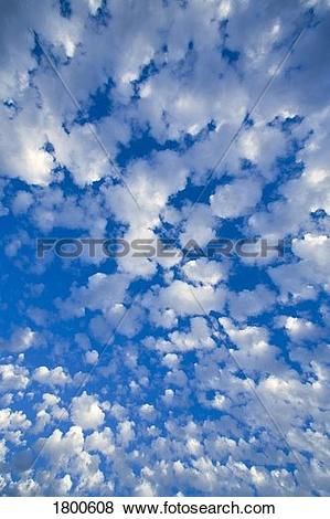 Pictures of Blue sky with scattered clouds 1800608.