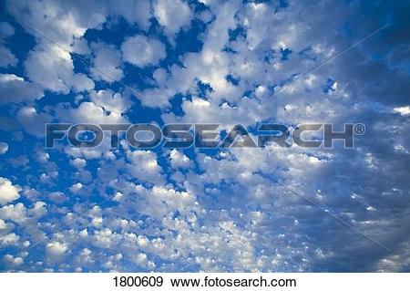 Stock Photograph of Blue sky with scattered clouds 1800609.