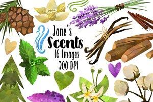Jasmine clip art Photos, Graphics, Fonts, Themes, Templates.