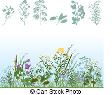 Chamomile Vector Clipart EPS Images. 6,898 Chamomile clip art.