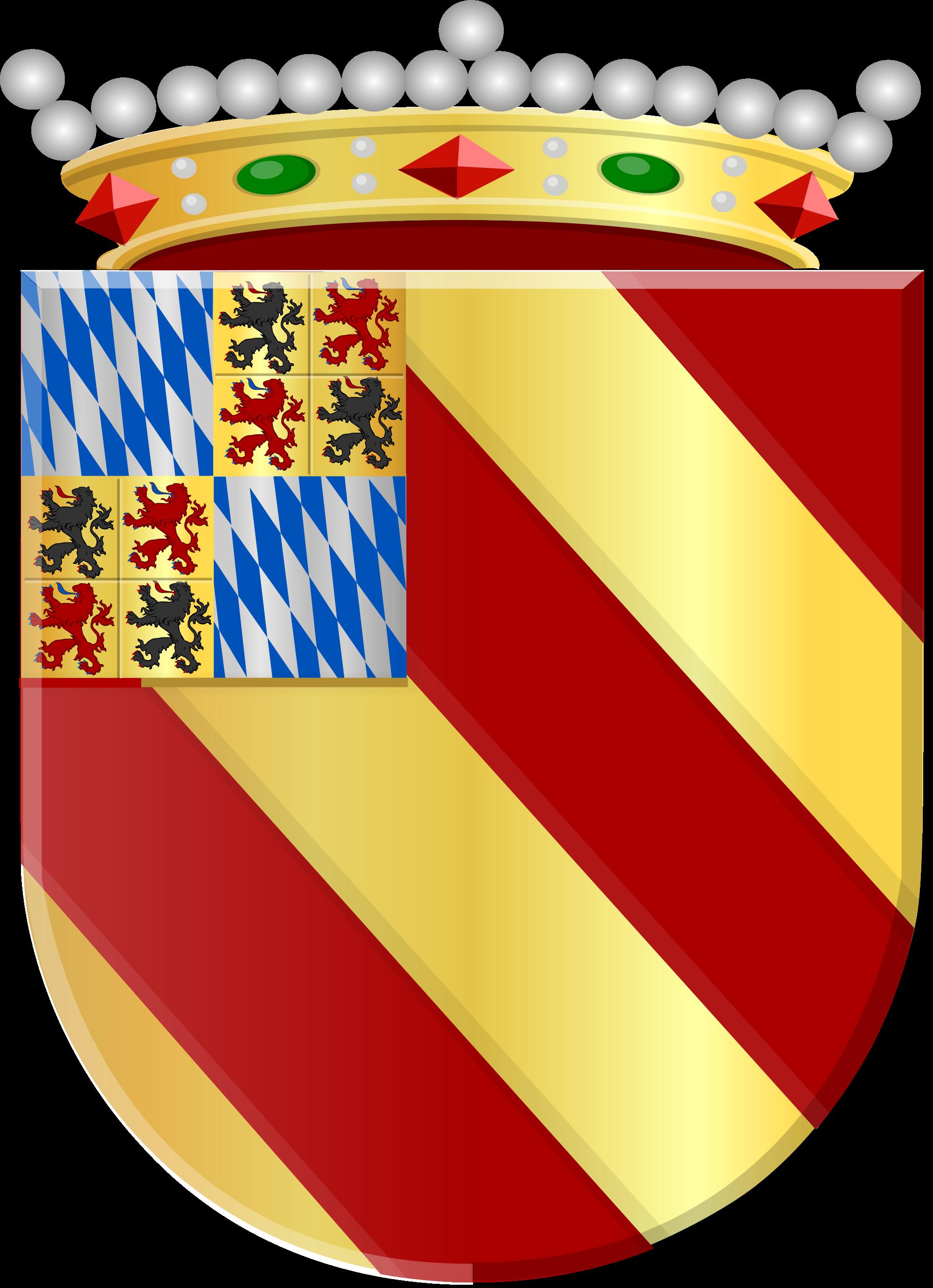 File:Diederik van Schagen.svg.