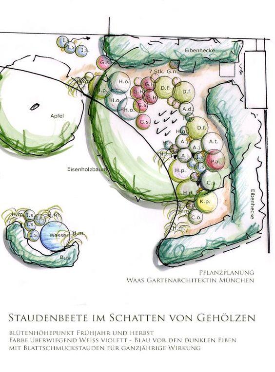 Pflanzplan schattiger Garten mit Beeten für Stauden, Gräser und.