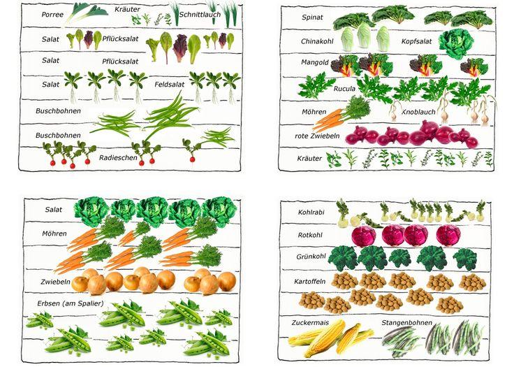 1000+ ideas about Bauerngarten Anlegen on Pinterest.