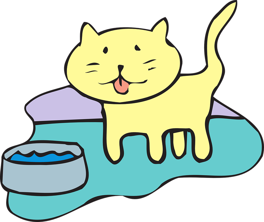 Free vector graphic: Cat, Water, Bowl, Pet, Animal.