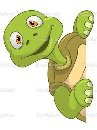 Bildergebnis für schildkröte clipart.