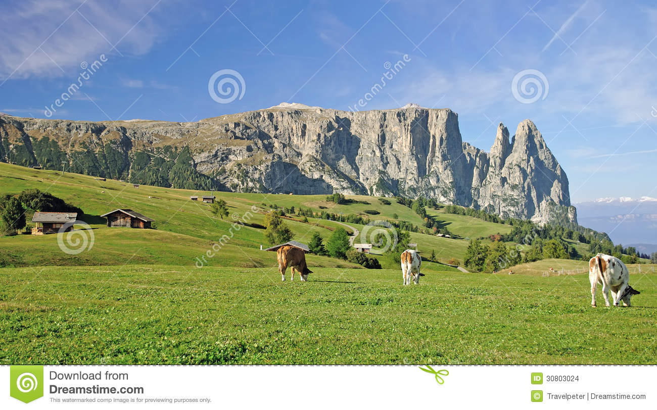 Seiser Alm With Schlern Mountain,South Tyrol,Italy Stock Images.