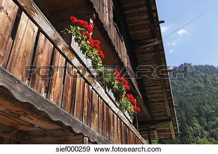 Stock Photograph of Germany, Upper Bavaria, Bavaria, Wooden.