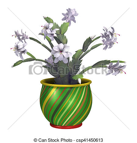 Clipart of 3D Rendering Christmas Cactus or Schlumbergera on White.