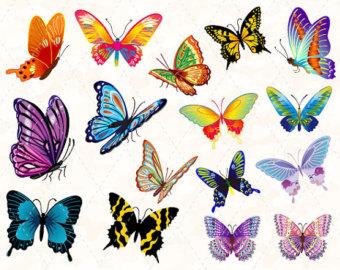 Schmetterlinge clipart.