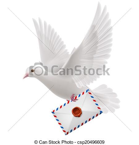 Vektor Clipart von weißes, Taube, fliegen, mit, Post, in, Schnabel.