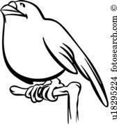 Schnabel Clipart und Illustrationen. 23.786 schnabel Clip Art.