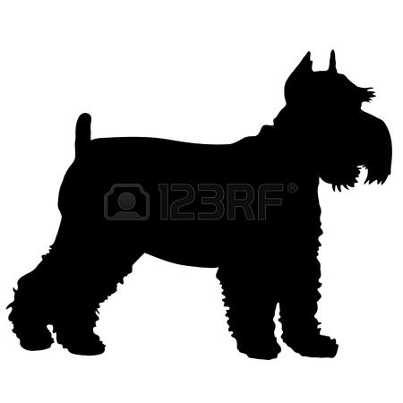 426 Schnauzer Stock Illustrations, Cliparts And Royalty Free.