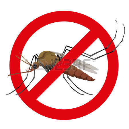 A Mosquito Stock Illustrations, Cliparts And Royalty Free A.