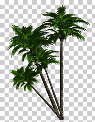2 schnappi PNG cliparts for free download.