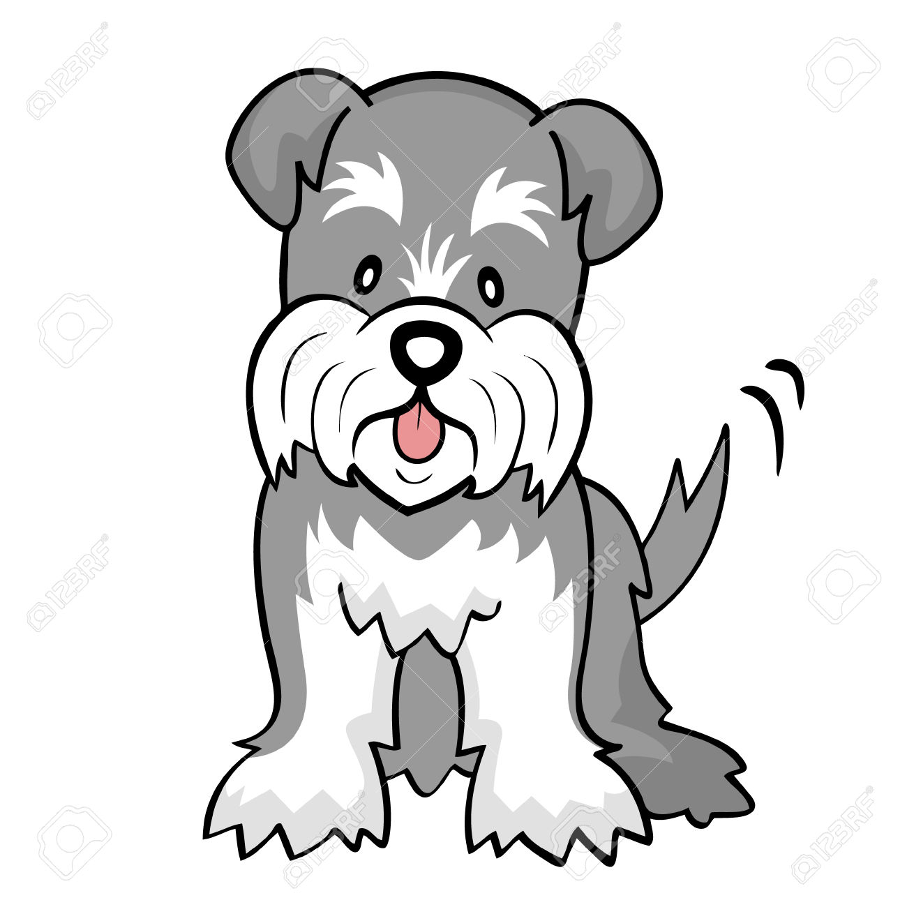 Miniature Schnauzer Drawing.
