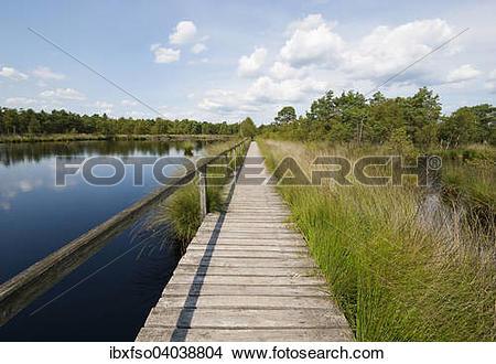 "Stock Photo of ""Boardwalk through the Pietzmoor, Luneburg Heath."